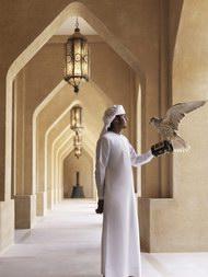 『安纳塔拉』快乐工作的天堂 之 阿联酋猎鹰专家