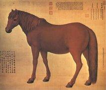 郎世宁的《百骏图》惊现北京拍场