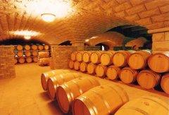 葡萄酒新世界:遥远而精彩