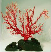 雯莉天然珊瑚树 夺目2011国际网上十大正规赌博网站展